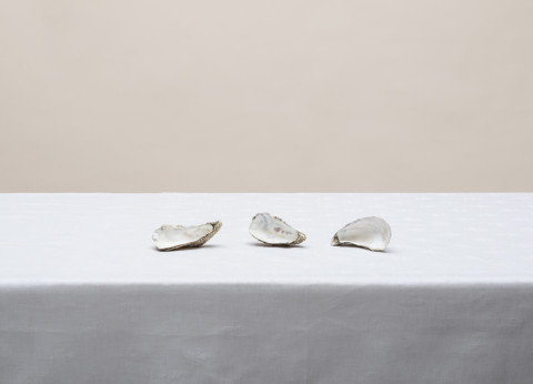 Pawel Zak,Untitled from the series And other still lifes,2014