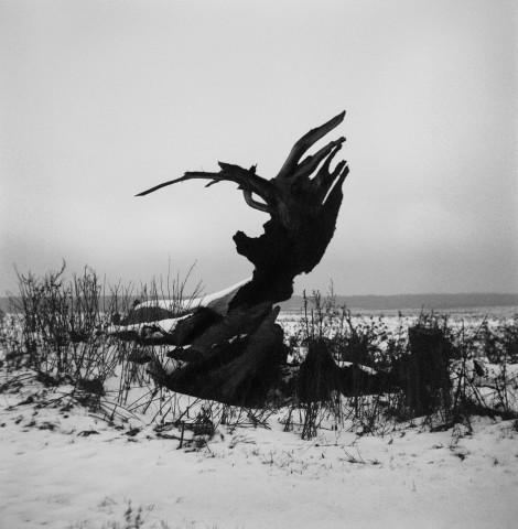 fot. Maksymilian Rigamonti