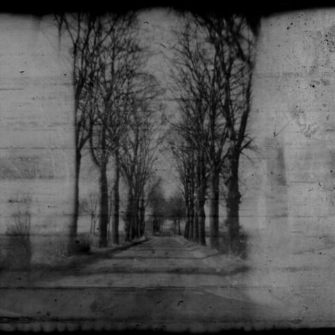 Mirror_Reality_03